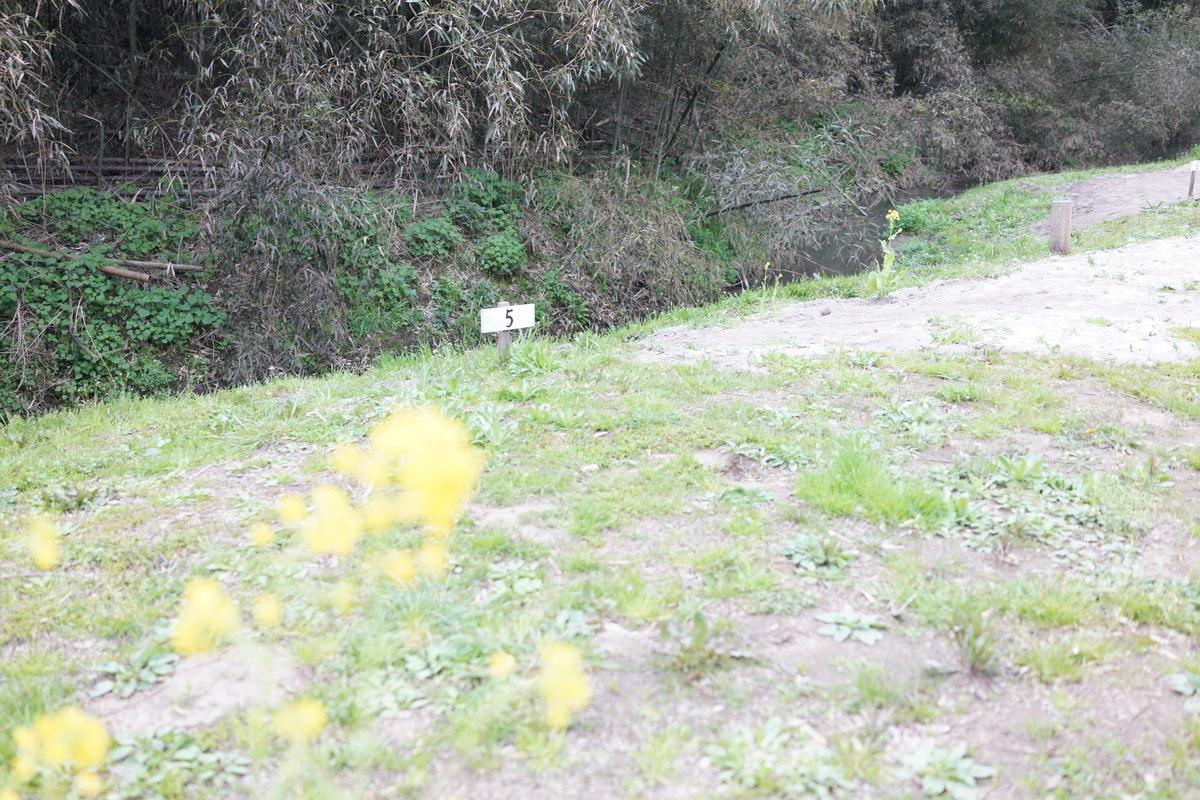 f:id:camera-yurucamp:20190403100549j:plain