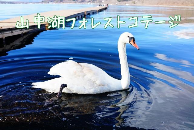 f:id:camera-yurucamp:20200107104836j:image