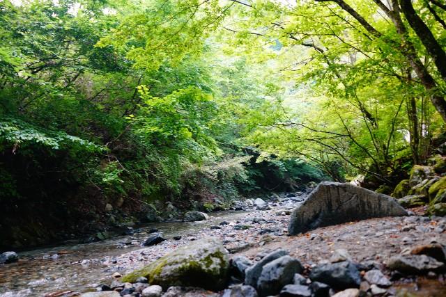 f:id:camera-yurucamp:20210815211408j:image